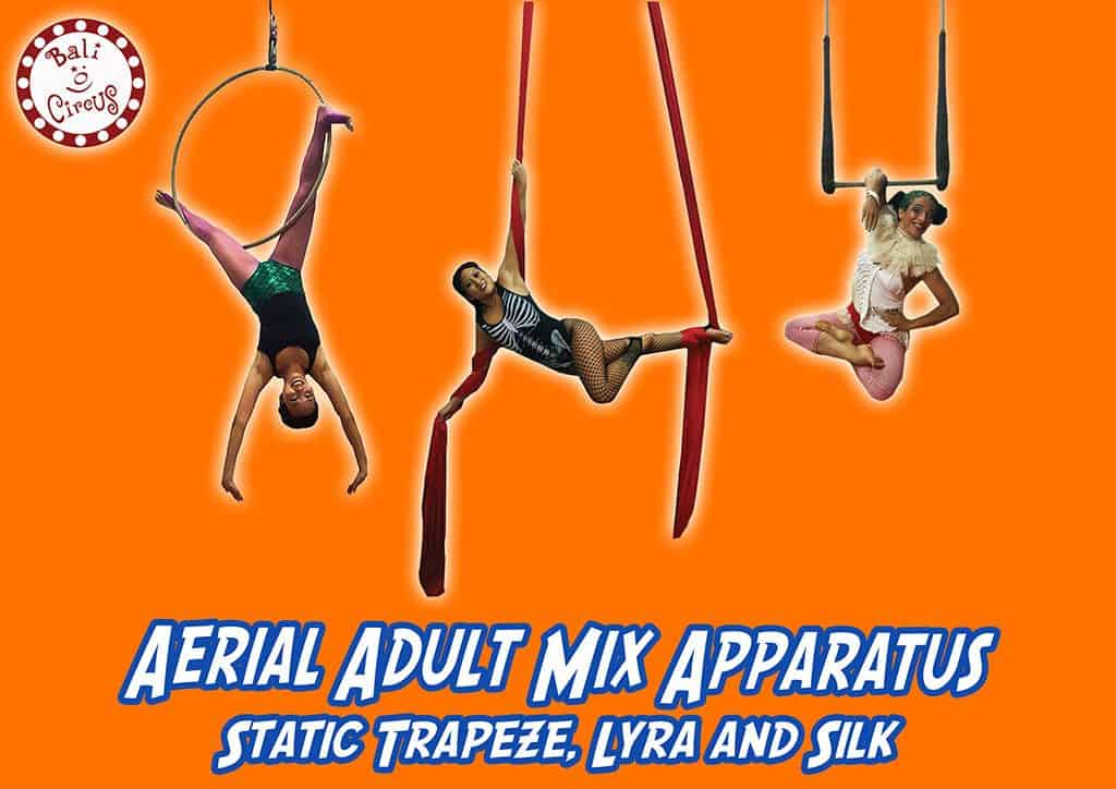 Bali Circus Aerial Adult Class