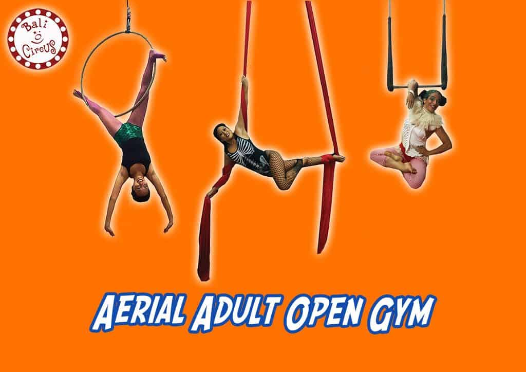 Bali Circus Aerial Adult Open Gym