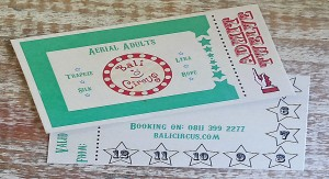 Ticket 12 Aerial Adults